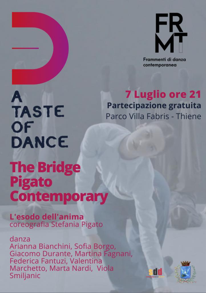 THE BRIDGE Pigato Contemporary di Stefania Pigato